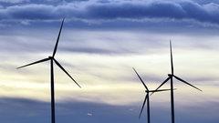 В Ульяновской области создается промышленная сеть ветропарков