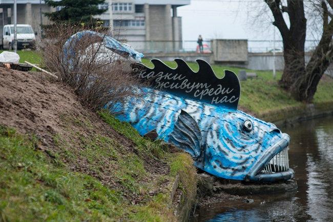 рыба-кит Калининград